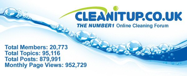 Clean It Up Example Advertising Campaigns